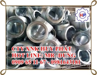 HÀNG ÁP LỰC INOX 304L ASTM A182 Grade 304 Stainless Steel Forged Fittings Specifications